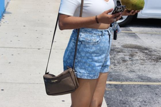 american apparel, ootd, fashion, nasty gal, coconuts, converse, chucks